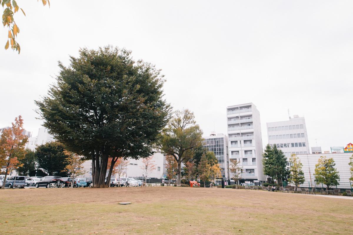 151029_tachikawa_sumire_019_22622475321_o